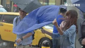 柯颱風補班0800