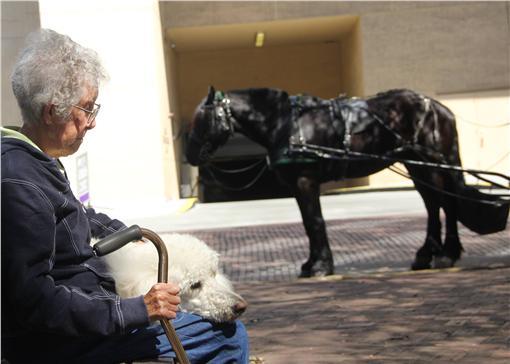 90歲罹癌老奶奶旅遊/Driving Miss Norma
