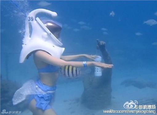 ▲林志玲拍攝大陸綜藝節目 穿比基尼。(圖/翻攝自林志玲微博)