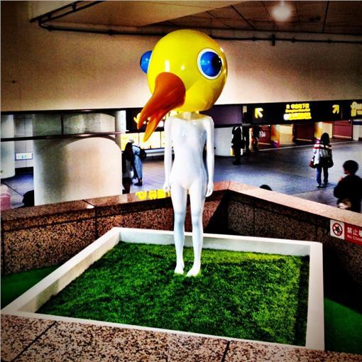 鳥頭,台北車站,北車(圖/翻攝自臉書)https://www.facebook.com/Daydreams.Aves/photos/a.161457740664147.40663.161408160669105/161457753997479/?type=3&theater