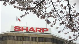 夏普,SHARP-圖/中央社(首圖)