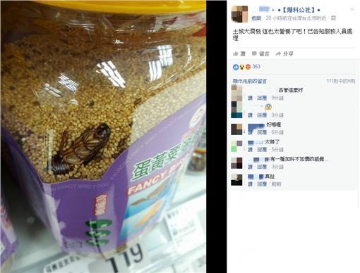 蟑螂,小強(爆料公社)