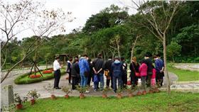 樹葬,海葬,環保葬,掃墓,清明節 圖/翻攝自台北市殯葬管理處官網
