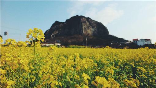 濟州特別自治道政府與韓國KT電信聯手,預計於3年內將濟州島打造為全區Wi-Fi Free的智慧型觀光島。(圖/公關照)
