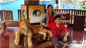 獅子被下藥/臉書/https://www.facebook.com/scorpionmonitor/videos/722144924595361/?fref=nf