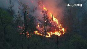 梨山火燒山1200