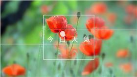 【天氣圖】今日天氣預報,氣象,準氣象(圖/https://www.flickr.com/photos/lolo65/6323739186/)