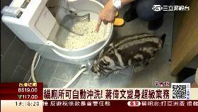 偉文貓廁所1800
