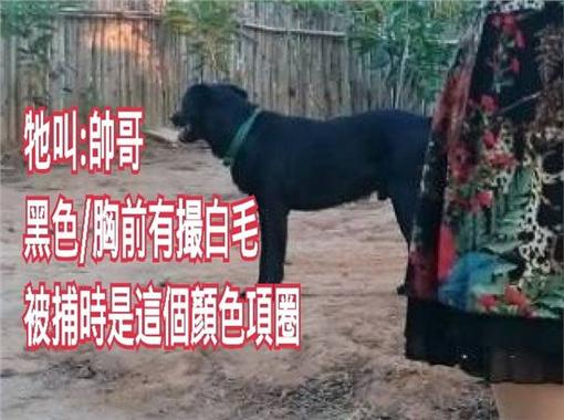 喑啞男子愛犬走失/爆料公社