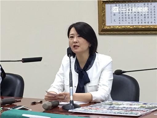 國民黨,美豬,王鴻葳/陳彥宇攝