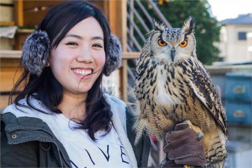 貓頭鷹餐廳,http://blogs.timeout.jp/en/2015/02/18/we-visited-an-owl-cafe-and-this-is-what-its-like/