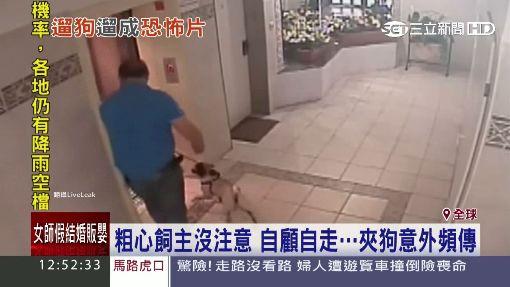 帶狗搭電梯小心!狗鍊夾門 貴賓犬險吊死