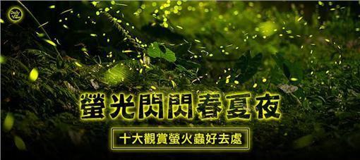 走春,東勢,阿里山,健行,賞螢,螢火蟲,網路溫度計
