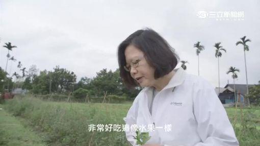 """國宴吃什麼 """"總統西瓜.在地冰淇淋""""上榜"""