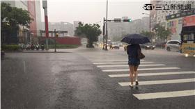 大雨、豪雨/張雅筑攝