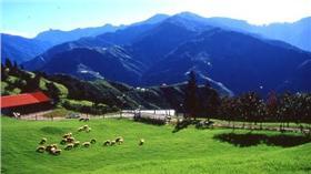 清境農場(圖/翻攝自中華民國觀光局網站)