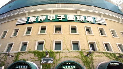 阪神甲子園球場推出「台灣日」活動。(圖/維基百科)