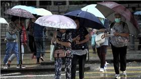 下雨,雷雨/中央社