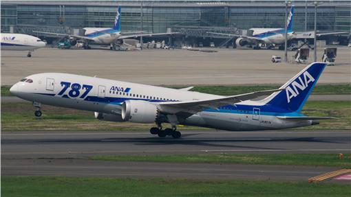 ANA 787-8客機。(圖/翻攝自維基百科)