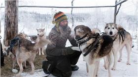 ▲女子與85隻哈士奇生活。(圖/翻攝自《每日郵報》) http://www.dailymail.co.uk/travel/travel_news/article-3584673/The-call-wild-Meet-dog-whisperer-traded-city-life-Lapland-s-wilderness-lives-85-huskies-no-electricity-running-water.html