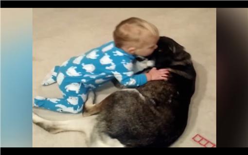 哈士奇`、寶寶(圖/翻攝自YouTube)