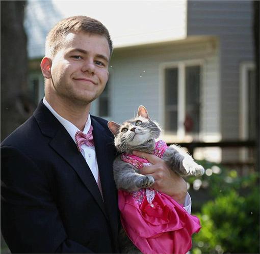 愛貓,圖/翻攝自PinkNews
