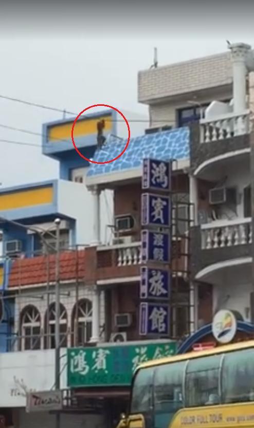 猴子、電線、墾丁大街(圖/翻攝自爆料公社)