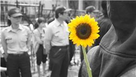 太陽花學運,318學運,318,太陽花,學運,林飛帆,陳為廷 圖/記者林敬旻攝