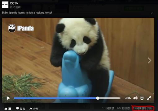 熊貓,CCTV,點閱率/CCTV臉書