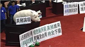 立法院、豬農、抗議、國民黨/國民黨提供