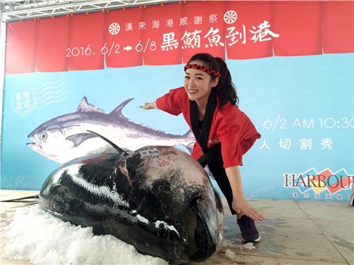 漢來海港感謝祭,推出黑鮪魚全餐。(圖/漢來海港餐廳提供)