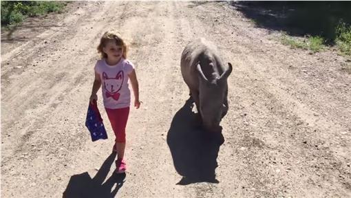 小女孩教白犀牛走路 (圖/翻攝自YouTube)