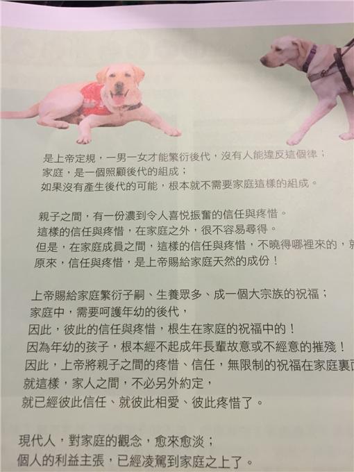 導盲犬,文宣,恐同(圖/翻攝自PTT)https://www.ptt.cc/bbs/Gossiping/M.1465024743.A.C72.html