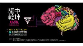 國立自然科學博物館-腦中乾坤特展-動畫比賽(圖/國立自然科學博物館提供)