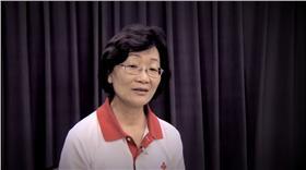紅十字會會長王清峰、段宜康/YouTube、資料照