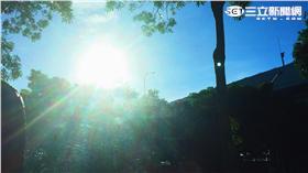 高溫 太陽 熱 \李慈音攝