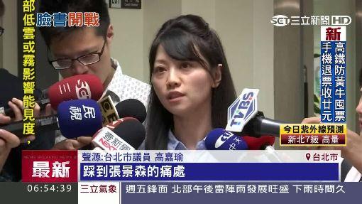 """張景森又上臉書 為""""京華城""""筆戰高嘉瑜"""