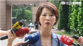 民進黨立委陳亭妃。(圖/記者盧素梅)