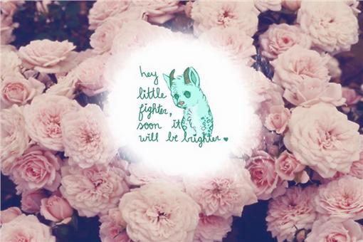 資深歌手黃鶯鶯也在臉書貼出一張圖片寫道,「小白不再有苦…天使回到天堂了。」