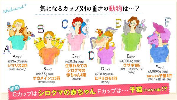 罩杯,重量,胸部,腰痠背痛,困擾,Genie(http://geniebra.jp/research/)