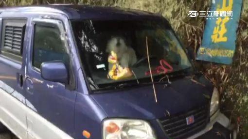 炸彈客車放南投 愛犬丟車內 車頭掛汽油