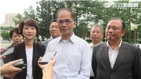 民進黨中常委、前行政院長游錫堃。(記者盧素梅攝)