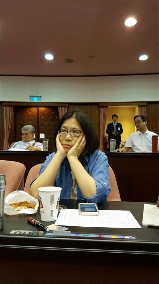 陳瑩,Q版蔡英文,女總統,520就職典禮,保羅領帶,周邊,管碧玲管碧玲臉書亞邦創意臉書