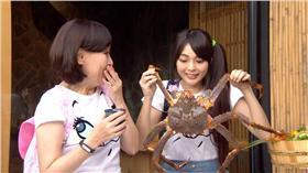 看到比臉還大的活體鱈場蟹,驚訝度破錶。
