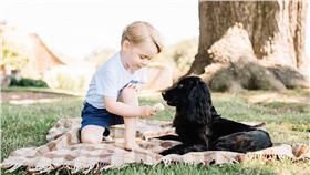 喬治小王子,Prince George,威廉王子,Prince William,凱特王妃,Kate Middleton,英國,皇室,萌,萌娃,餵狗,冰淇淋,乳製品,巧克力,盧波,虐待,動物-翻攝自The Royal Family臉書16:9