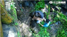 山羌、滿月圓森林遊樂區/民眾提供