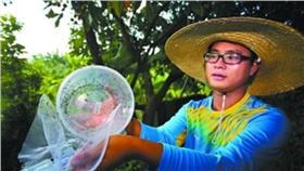 蚊子,工廠(圖/翻攝自廣州日報) http://gzdaily.dayoo.com/html/2016-07/23/content_5_1.htm