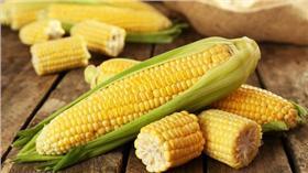 玉米/達志影像