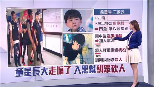 童星,王欣逸,電視劇,黑道,竹聯幫,殺人罪