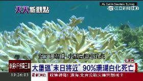 澳珊瑚死光1800